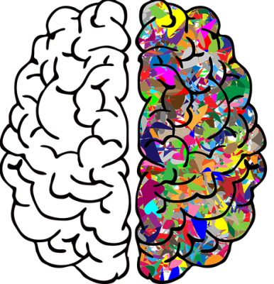 The Brain Story and How it Relates to the Intake of Adult Foundational Literacy Learners